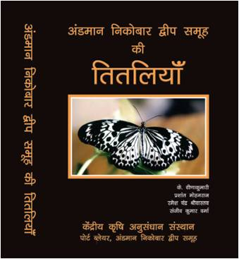 sentences on butterfly in hindi